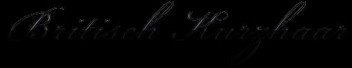 Logo Britisch Kurzhaar