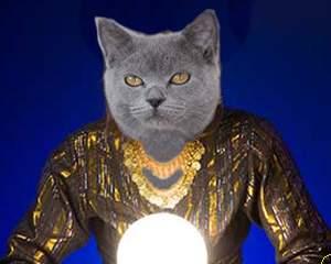 Katzen Horoskop